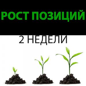 продвижение сайтов в Могилеве